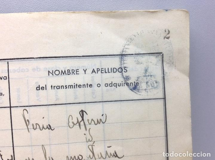 Libros de segunda mano: LIBRO DE REGISTRO DE GANADO - AYUNTAMIENTO DE SON DEL PINO - SON -VALENCIA DE ANEU - LERIDA - Foto 9 - 195424496
