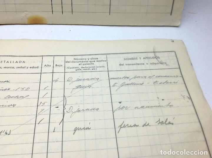 Libros de segunda mano: LIBRO DE REGISTRO DE GANADO - AYUNTAMIENTO DE SON DEL PINO - SON -VALENCIA DE ANEU - LERIDA - Foto 14 - 195424496