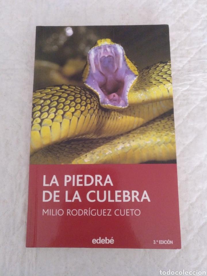 LA PIEDRA DE LA CULEBRA. MILIO RODRÍGUEZ CUETO. LIBRO (Libros de Segunda Mano (posteriores a 1936) - Literatura - Otros)