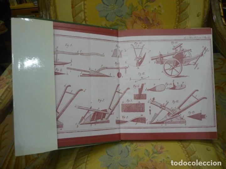 Libros de segunda mano: AGRICULTORES, BOTÁNICOS Y MANUFACTUREROS EN EL SIGLO XVIII. LOS SUEÑOS DE LA ILUSTRACIÓN ESPAÑOLA. - Foto 4 - 195513360