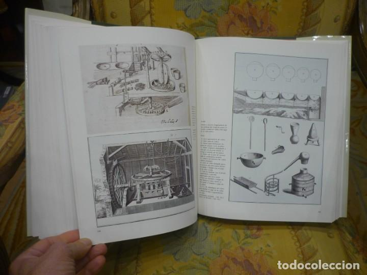 Libros de segunda mano: AGRICULTORES, BOTÁNICOS Y MANUFACTUREROS EN EL SIGLO XVIII. LOS SUEÑOS DE LA ILUSTRACIÓN ESPAÑOLA. - Foto 12 - 195513360