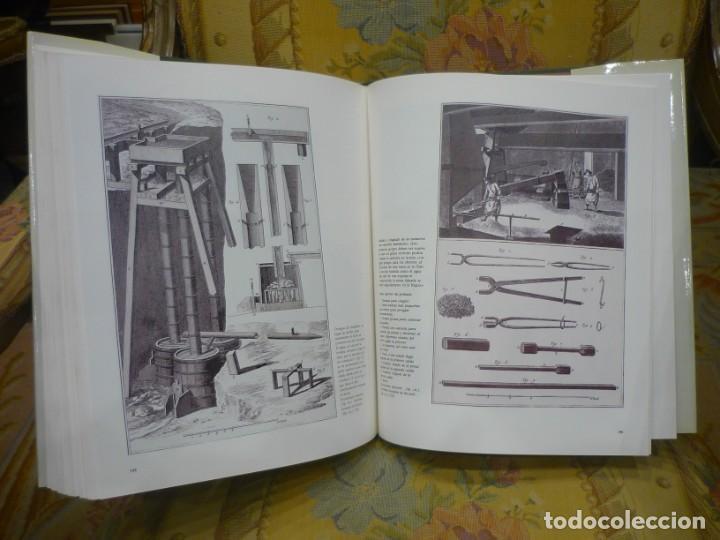 Libros de segunda mano: AGRICULTORES, BOTÁNICOS Y MANUFACTUREROS EN EL SIGLO XVIII. LOS SUEÑOS DE LA ILUSTRACIÓN ESPAÑOLA. - Foto 13 - 195513360