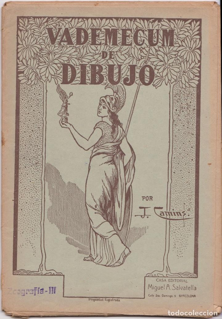VADEMECUM DE DIBUJO – ZOOGRAFIA III – J.CAMINS – EDITORIAL M.A.SALVATELLA – 15 LÁMINAS (Libros de Segunda Mano - Ciencias, Manuales y Oficios - Otros)