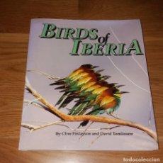 Libros de segunda mano: LIBRO. BIRDS OF IBERIA, FINLAYSON AND TOMLISON. 2003, SANTANA BOOKS. Lote 197253318