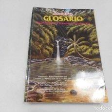 Libros de segunda mano: ARACELI EGEA GLOSARIO DICCIONARIO DE TÉRMINOS METAFÍSICOS Y99710W . Lote 198400990