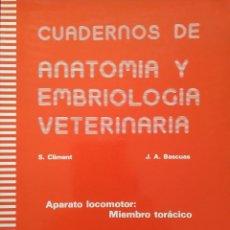 Livros em segunda mão: CUADERNOS DE ANATOMÍA Y EMBRIOLOGÍA VETERINARIA. Nº 3 -- CLIMENT/BASCUAS. Lote 200534163