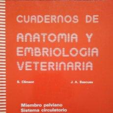 Libros de segunda mano: CUADERNOS DE ANATOMÍA Y EMBRIOLOGÍA VETERINARIA Nº 4 -- CLIMENT/BASCUAS. Lote 200534538