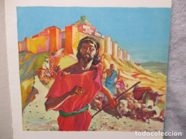 Libros de segunda mano: La Biblia contada a todos por Michel Riquet de Ed. Timun Mas - Foto 11 - 263107010