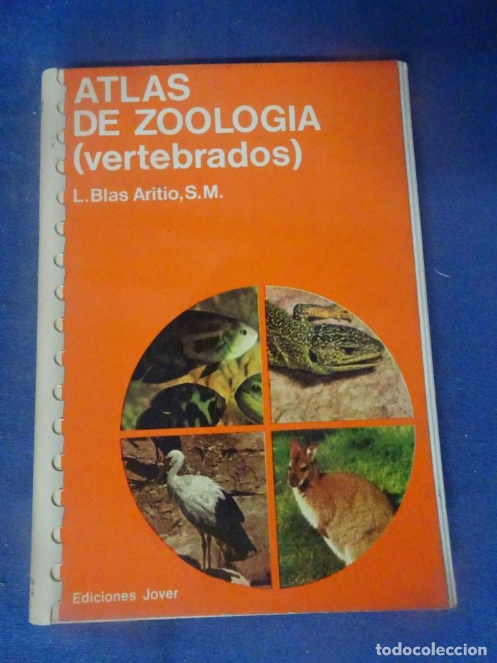 ATLAS DE ZOOLOGÍA, ED. JOVER - , MUY ILUSTRADO , VER FOTOS (Libros de Segunda Mano - Ciencias, Manuales y Oficios - Otros)