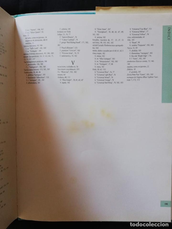 Libros de segunda mano: JARDINERÍA EN MACETAS - GUÍA PRÁCTICA ILUSTRADA Alan Toogood - Foto 10 - 205145757