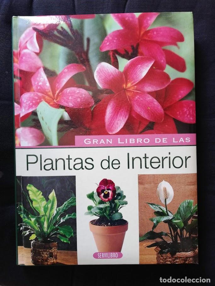 EL GRAN LIBRO DE LAS PLANTAS DE INTERIOR - PIERRE NESSMANN (Libros de Segunda Mano - Ciencias, Manuales y Oficios - Otros)