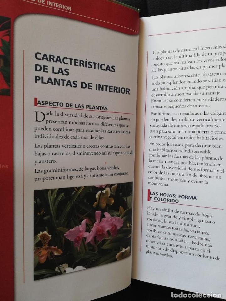 Libros de segunda mano: EL GRAN LIBRO DE LAS PLANTAS DE INTERIOR - PIERRE NESSMANN - Foto 2 - 205148137