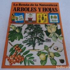 Libros de segunda mano: LIBRO ANTIGUO JUVENIL LA SENDA DE LA NATURALEZA ARBOLES Y HOJAS EDICIONES PLESA SM. Lote 205588491