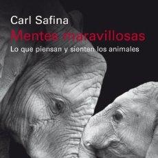 Libros de segunda mano: MENTES MARAVILLOSAS. - SAFINA, CARL.. Lote 205613000