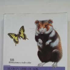 Libros de segunda mano: EL GRAN LIBRO DE LOS ANIMALES 535 ILUSTRACIONES A TODO COLOR. SUSAETA. TDK197. Lote 206259795