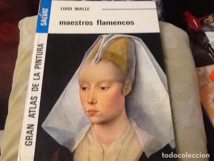 LUIGI MALLE MAESTROS FLAMENCOS DETERIORADO (Libros de Segunda Mano (posteriores a 1936) - Literatura - Otros)