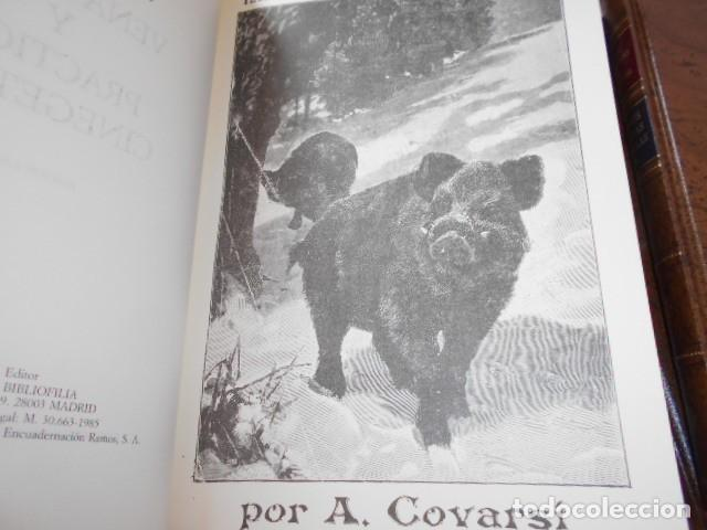 Libros de segunda mano: OBRAS COMPLETAS DE ANTONIO COVARSI / ESTUCHE - Foto 7 - 206550746