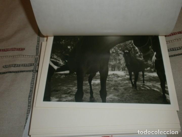 Libros de segunda mano: El caballo de pura raza española edición limitada 1500 libro con 12 fotografias Javier Herranz - Foto 5 - 206580285