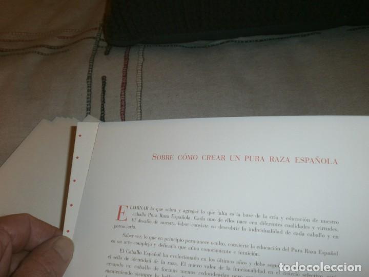 Libros de segunda mano: El caballo de pura raza española edición limitada 1500 libro con 12 fotografias Javier Herranz - Foto 10 - 206580285