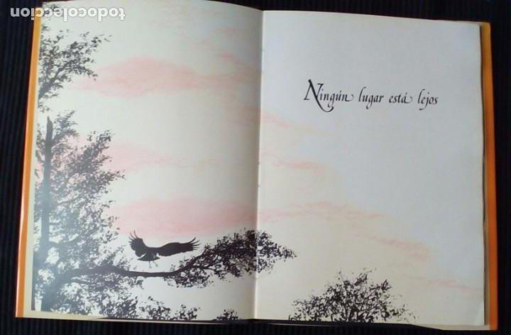 Libros de segunda mano: NINGUN LUGAR ESTA LEJOS. RICHARD BACH. POMAIRE 1980. ILUSTRADO POR RON WEGEN. - Foto 3 - 207010736