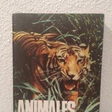 Libros de segunda mano: ANIMALES FORMAS Y ÁMBITOS DE VIDA. Lote 207112336