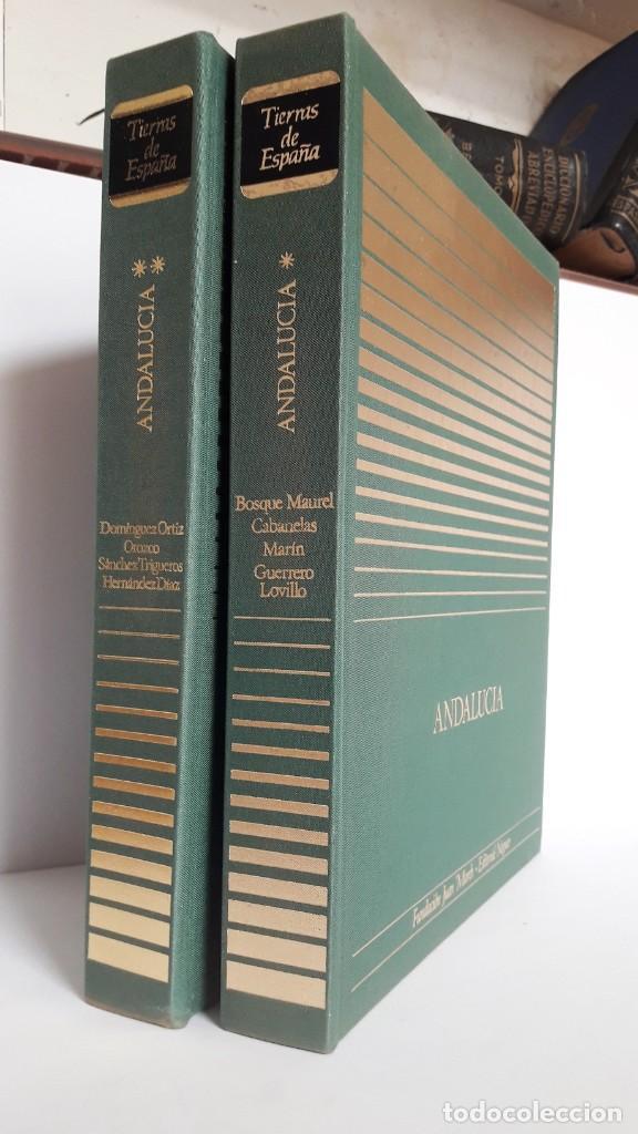 Libros de segunda mano: ANDALUCÍA, TIERRAS DE ESPAÑA, 2 TOMOS – 1ª edición. Fundación Juan March. - Foto 4 - 207894107