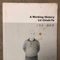 Libros de segunda mano: A WORKING HISTORY. LU CHIEH-TE. EXHIBITION ARE EE WORKING TOO MUCH? ESLIE GALLERY 2013.. Lote 209059640