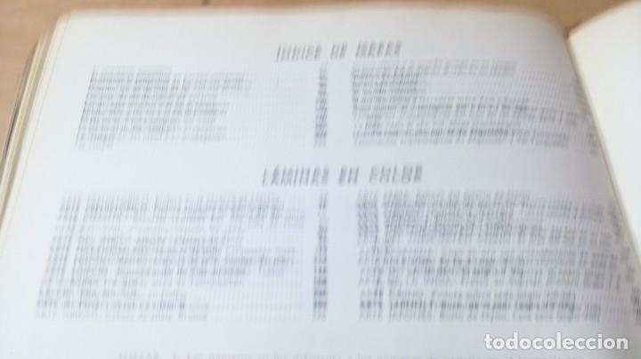 Libros de segunda mano: EL ARTE Y EL HOMBRE I - PLANETA - RENE HUYGHE GRAVOL22 OTROS - Foto 36 - 209771680