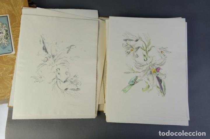 """Libros de segunda mano: Libro perteneciente a cuatro ejemplares especiales con texto estampado sobre papel """"verjurat Castell - Foto 9 - 209971290"""