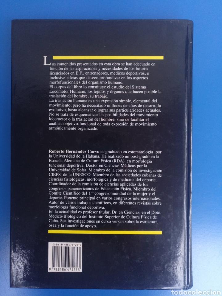 Libros de segunda mano: LIBRO MORFOLOGIA FUNCIONAL DEPORTIVA, SISTEMA LOCOMOTOR,AUTOR ROBERTO HERNÁNDEZ CORVO - Foto 4 - 211506386