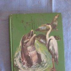 Libros de segunda mano: HISTORIAS VERIDICAS DE ANIMALES. FLORENCIA DE ARQUER. COLECCION JUVENIL FERMA Nº 44. ED. FERMA 1965.. Lote 211580577