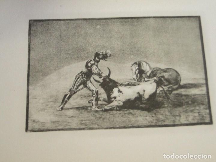 Libros de segunda mano: LA TAUROMAQUIA. Colección de las diferentes suertes y actitudes del arte de lidiar con los toros. - Foto 7 - 212781361