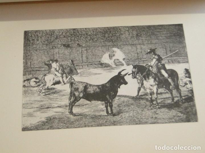 Libros de segunda mano: LA TAUROMAQUIA. Colección de las diferentes suertes y actitudes del arte de lidiar con los toros. - Foto 12 - 212781361