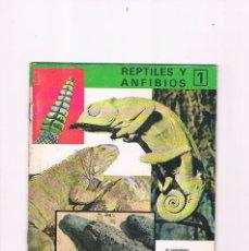 Libros de segunda mano: REPTILES Y ANFIBIOS 1 REINO ANIMAL PARA NIÑOS CUADERNO NUMERO 10 EDITORIAL RAMON SOPENA 1969. Lote 214286362