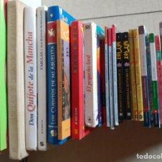 Libros de segunda mano: LOTE DE LIBROS INFANTILES Y JUVENILES, QUIJOTE, BAT PAT, STILTON,FABULAS, CUENTOS, ALGUNOS EN INGLÉS. Lote 215398346