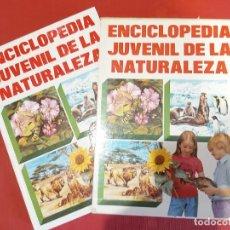 Libros de segunda mano: ENCICLOPEDIA JUVENIL DE LA NATURALEZA EDITORIAL MOLINO. Lote 217093731
