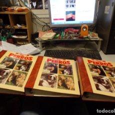 Libros de segunda mano: ENCICLOPEDIA PLANETA AGOSTINI 1994 MIS AMIGOS LOS PERROS COMO NUEVA. Lote 222001516