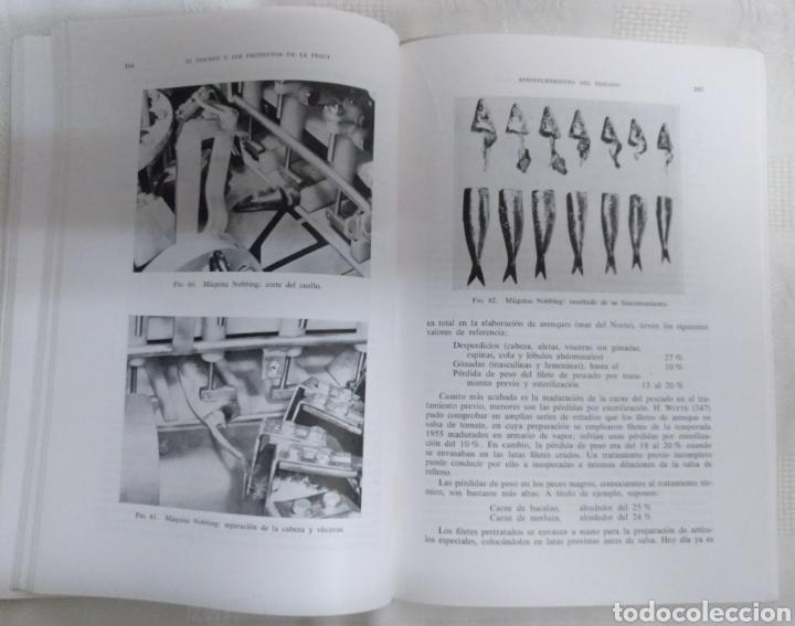 Libros de segunda mano: EL PESCADO Y LOS PRODUCTOS DE LA PESCA. W.LUDORFF/V.MEYER.1973 - Foto 6 - 222616771