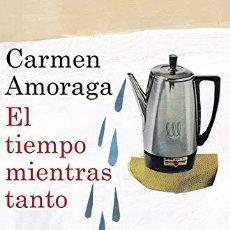 Libros de segunda mano: EL TIEMPO MIENTRAS TANTO - CARMEN AMORAGA. Lote 222828870
