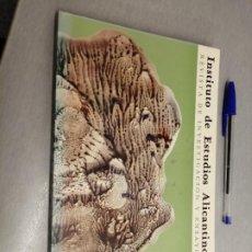 Libri di seconda mano: INSTITUTO DE ESTUDIOS ALICANTINOS Nº 34 - AÑO 1981 / EXCMA. DIPUTACIÓN PROVINCIAL DE ALICANTE. Lote 225319093