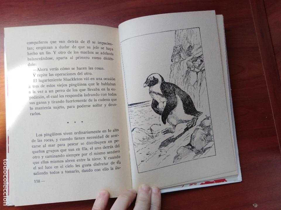 Libros de segunda mano: Historietas de animales. Rosa Fumagalli - Foto 2 - 226142777