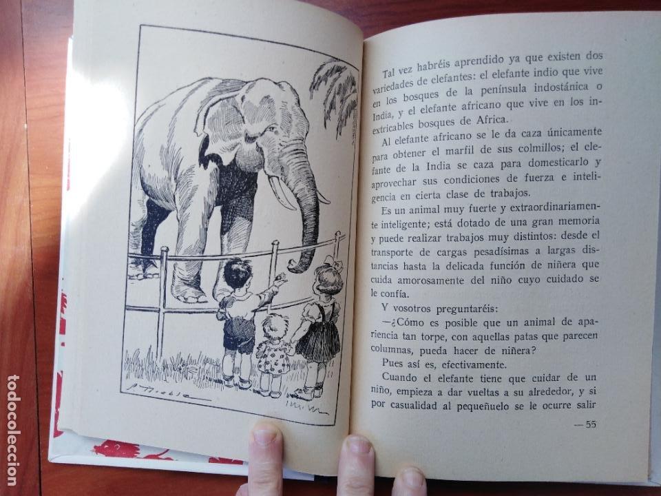 Libros de segunda mano: Historietas de animales. Rosa Fumagalli - Foto 4 - 226142777