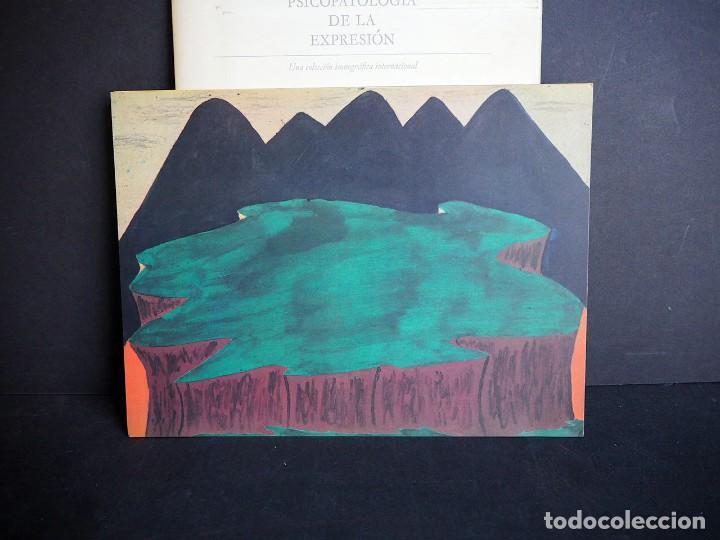 Libros de segunda mano: Psicopatología de la expresión. Serie 8. La representación pictórica de la depresión. Sandoz 1965 - Foto 8 - 226251085