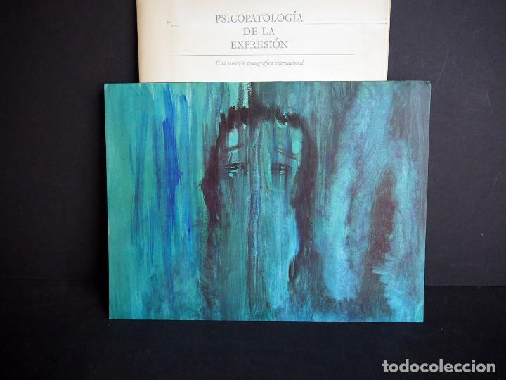Libros de segunda mano: Psicopatología de la expresión. Serie 8. La representación pictórica de la depresión. Sandoz 1965 - Foto 13 - 226251085