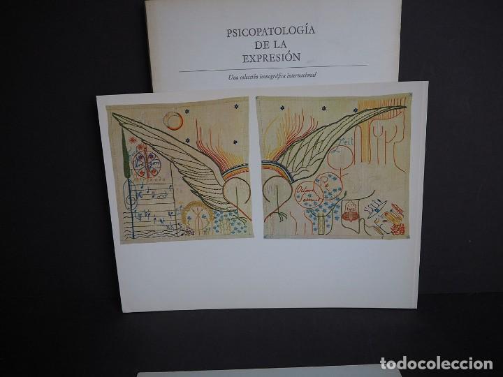 Libros de segunda mano: Psicopatología de la expresión. Serie 12. Meteriales raros en la creación artística .... Sandoz 1968 - Foto 13 - 226253635