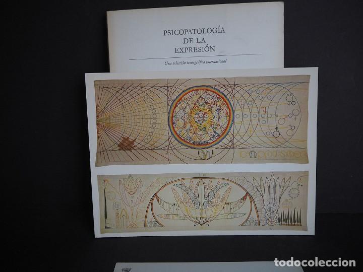 Libros de segunda mano: Psicopatología de la expresión. Serie 12. Meteriales raros en la creación artística .... Sandoz 1968 - Foto 14 - 226253635