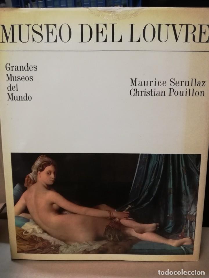 MUSEO DEL LOUVRE (Libros de Segunda Mano - Bellas artes, ocio y coleccionismo - Otros)
