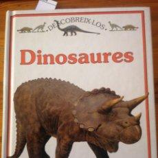 Libros de segunda mano: DINOSAURES. PLAZA JOVEN. IL. DE JANE CRACDOCK-WATSON I DAVE HOPKINS.. Lote 228002490