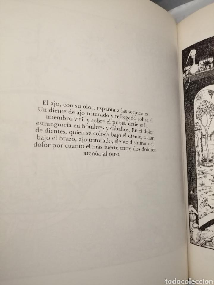 Libros de segunda mano: Comentarios a las Tablas Médicas de Salerno por Bernardo Provenzal (Primera edición) - Foto 18 - 229682005