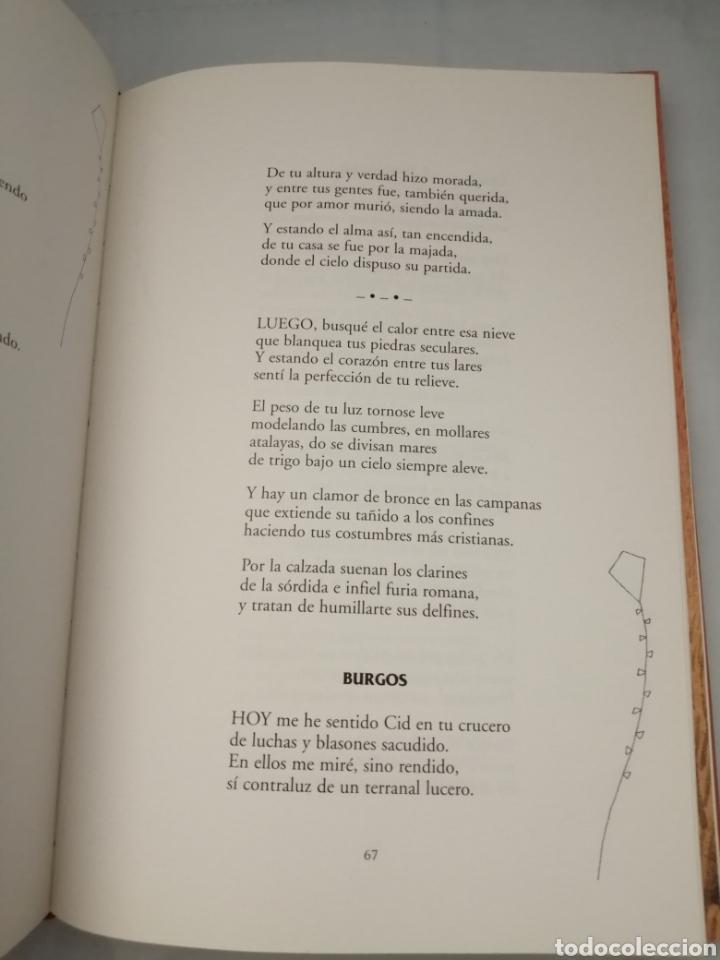 Libros de segunda mano: Los mayores cuentan: concursos de cuentos y poesía para las personas mayores, 1997-2001 - Foto 9 - 230347385